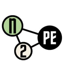 network for new political economy logo
