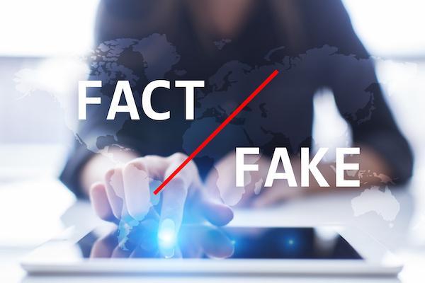 woman using computer - fact and fake news